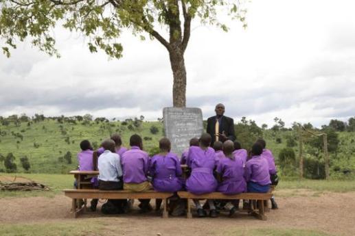 educazione primaria universale