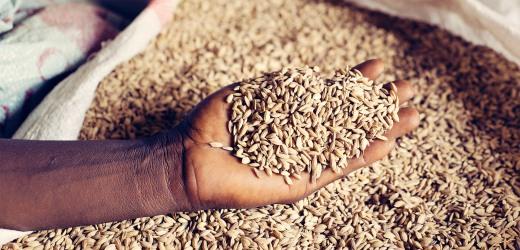 paesi-poveri-alimentazione