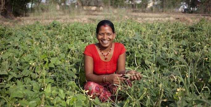 Obiettivi di sviluppo sostenibile: lavoro e crescita economica