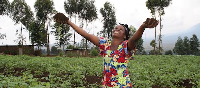 Obiettivi di sviluppo sostenibile: ridurre le disuguaglianze