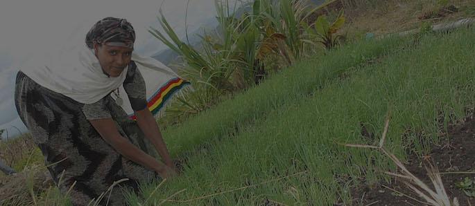 viaggio in Africa: Etiopia