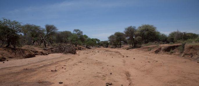 Paesi siccità