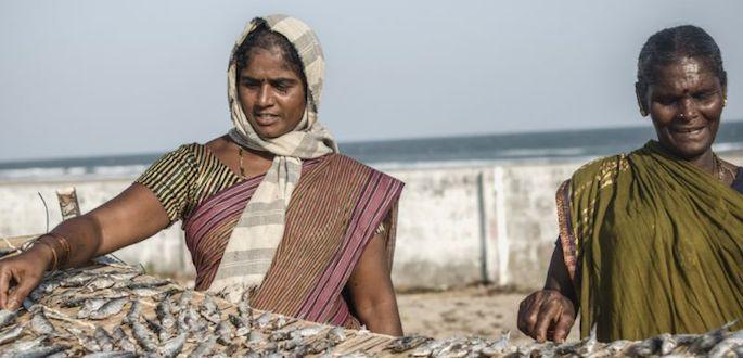 cambiamenti climatici e fame